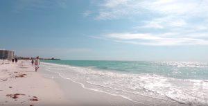 paleta de playa maui - Los 10 mejores