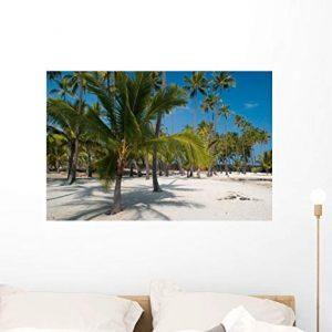 palmera playa dibujo - Catálogo de los 10 más vendidos